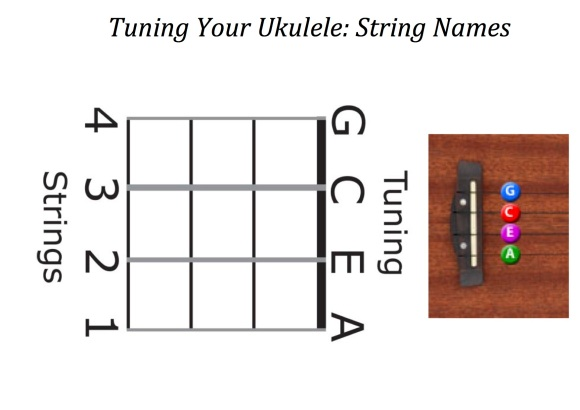 Ukulele Program | musicattuckerroadprimaryschool